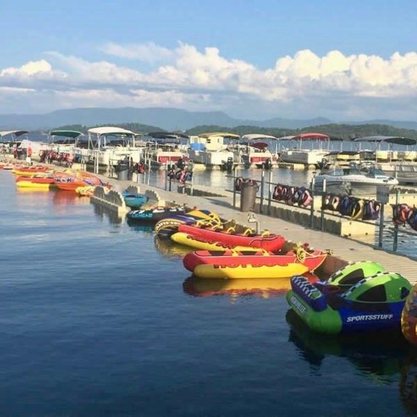 Douglas Lake Marina