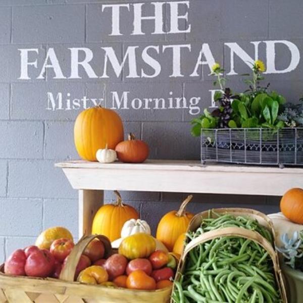 Misty Morning Farm Stand logo