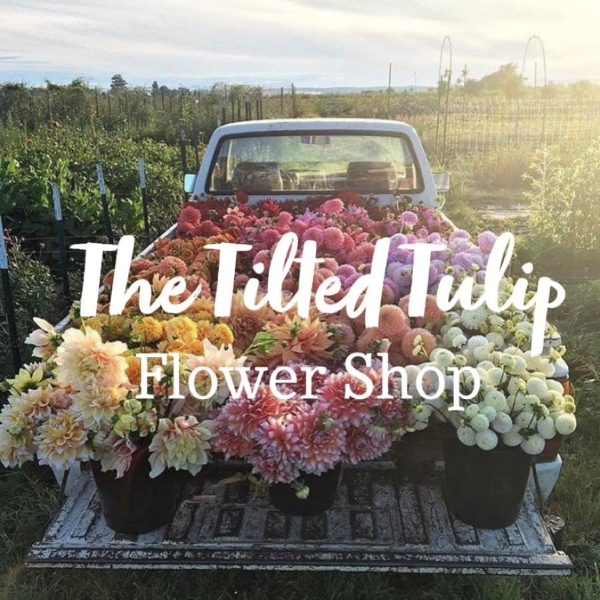 Logo for Tilted Tulip.