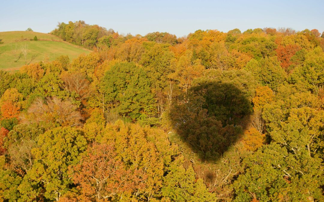 hot air balloon shadow over the great smoky mountains